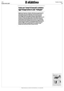 Articolo-Mattino--(Centro-Mercuri)